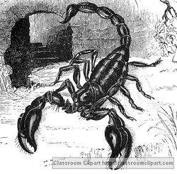 Scorpio Illustration provided by Classroom Clip Art (http://classroomclipart.com)